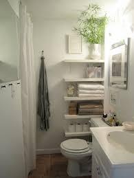 Next Bathroom Shelves 75 Best Apartment Bathrooms Images On Pinterest Bathroom