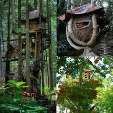 three house photos of tree houses solidaria garden