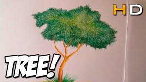 how to draw a tree with colored pencil step by step for 2