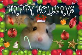 merry holidays to the a2k hamsters