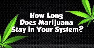 buy edible cannabis online thc cbd edibles for chronic order edibles online