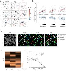 odor identity coding by distributed ensembles of neurons in the