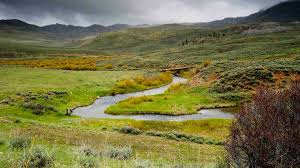 fly fishing spring u0027s early hatches in utah jans com