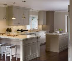 Transitional Single Line Taupe Kitchen Grey Cabinets - Kitchen cabinets san francisco