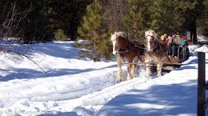 sleigh rides leavenworth washington