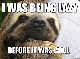 Make A Sloth Meme - 49 funny lazy memes hilarious pictures images picsmine
