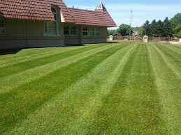 Landscaping Lawn Care by Contact Us 330 620 6200 U2013 4 Seasons Services Lawn Care