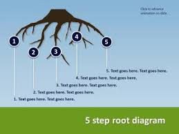 growing decision idea tree u0026 roots a powerpoint template from