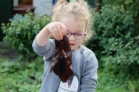taste safe chocolate slime