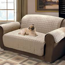 Bed Bugs In Sofa by The Most Elegant And Interesting Plastic Sofa Covers For Bed Bugs