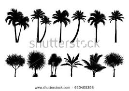 vector set tropical palm tree silhouettes stock vector 630405398