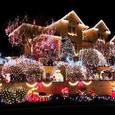 20 best amazing home christmas light displays images on pinterest