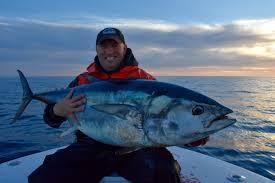 epic giant bluefin tuna catch in cape cod u2013 reel deal fishing charters