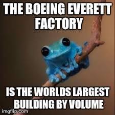 Fact Frog Meme - fun fact frog memes imgflip