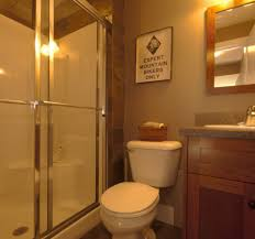 basement bathroom renovation ideas ashburn transitional basement bathroom contemporary bathroom