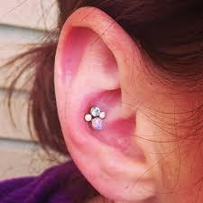 conch piercing cuff över 1 000 bilder om piercing på pinterestsmycken örhängen och