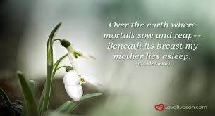 Words Of Comfort For Funeral 27 Best Funeral Poems For Mom Love Lives On