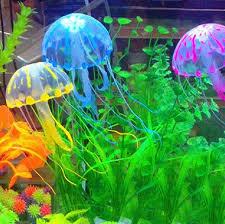 366 best fish fish tanks images on aquarium ideas