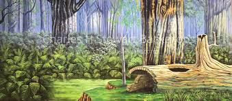 forest backdrop forest sw backdrop backdrops by charles h stewart