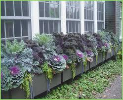 decorative outdoor flower window planter box webbird co