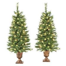 3 5 pre lit artificial urn trees with clear lights at