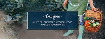 creative vegetable gardener creative vegetable gardening advice