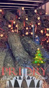 christmas tree lot saint louis priory