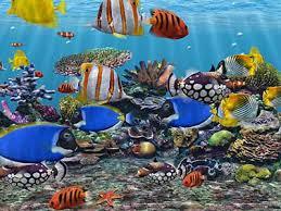 wallpaper ikan bergerak untuk pc 3d fish screensaver free virtual fish aquarium download