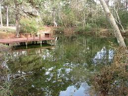 40411 mill creek rd magnolia tx 77354 har com
