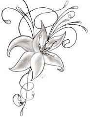 pictures pictures of pretty flowers to draw drawing art gallery