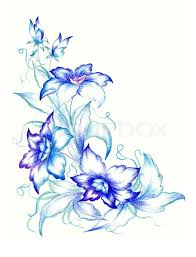 white and blue flowers blue flowers on white background stock photo colourbox