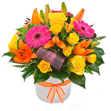 get well soon flowers get well soon get well soon flowers56333 get well soon
