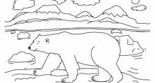 polar bear colouring sheet archives cool coloring pages
