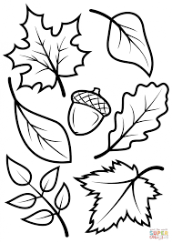 98 coloring pages for preschoolers fall pages for