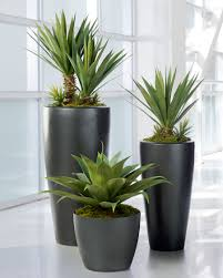 broad leaf agave artificial succulent plant agaves plants and