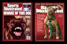 american pitbull terrier z hter deutschland america u0027s dog the history of pit bulls