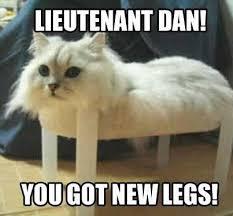 Parody Meme - austin com funny forrest gump parody cat memes