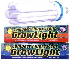plant grow lights lowes fluorescent grow light lowes musho me