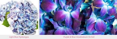 purple and blue flowers purple pink and blue wedding flowers enchanted florist puple pink