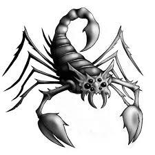 zodiac scorpio design tattooshunt com