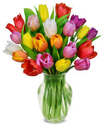 tulips flowers rainbow tulip bouquet 20 stems at from you flowers
