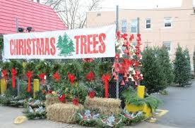 christmas tree sale no christmas tree related fires this year in bayonne officials