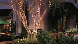 how to string lights on a tree round tree lights round designs