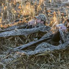 Layout Blinds Reviews Waterfowl U003e Blinds