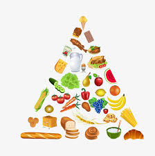 healthy eating pyramid food pyramid cartoon hand drawing png