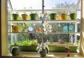 kitchen garden window ideas kitchen garden window home ideas for everyone