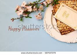 passover seder booklet passover seder stock images royalty free images vectors