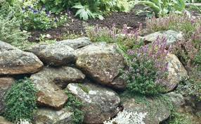 planted pockets give life to stone walls finegardening