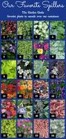 List Of Tropical Plants Names - the garden geeks favorite spillers for seed giveaways daily