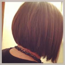 short stacked layered hairstyles best hairstyle 2016 back of one of my stacked bobs short stack stacked bob haircut